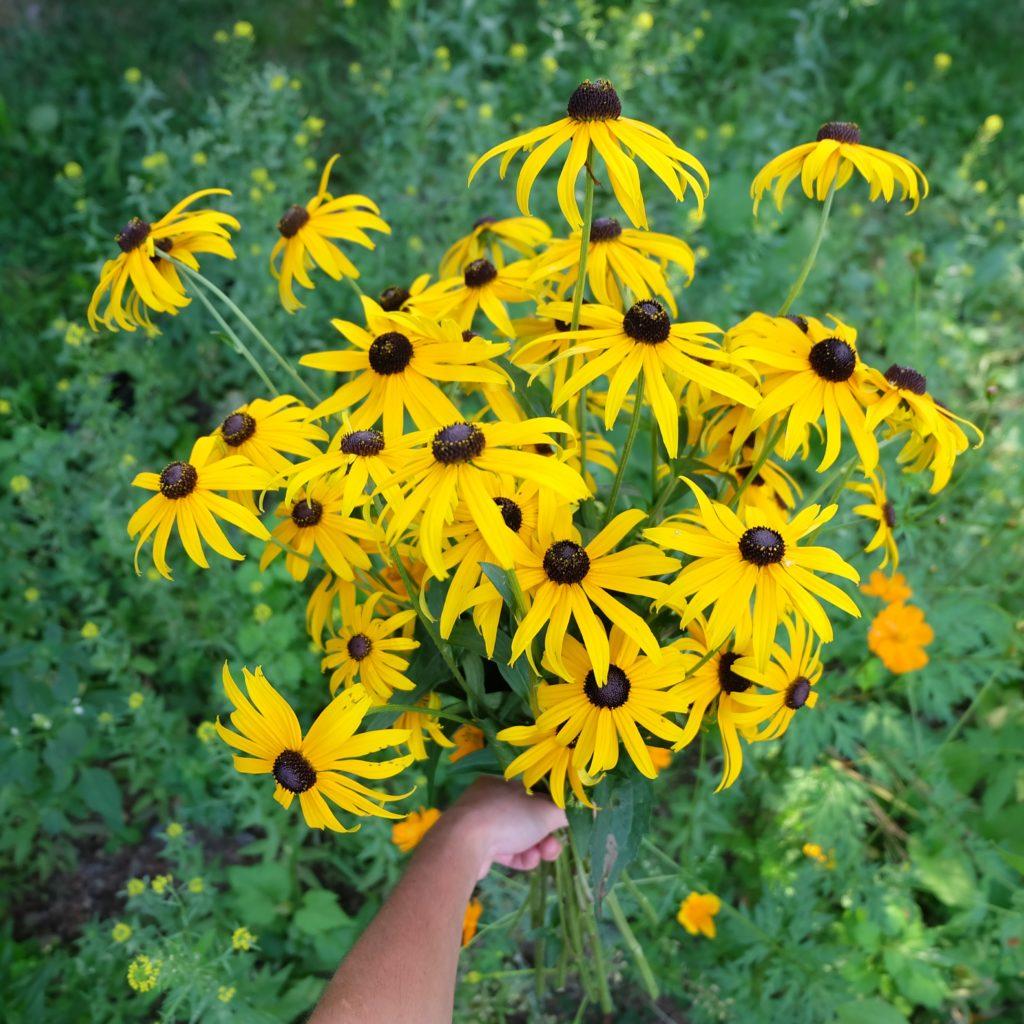 fleurs locales bienfaits bonheur