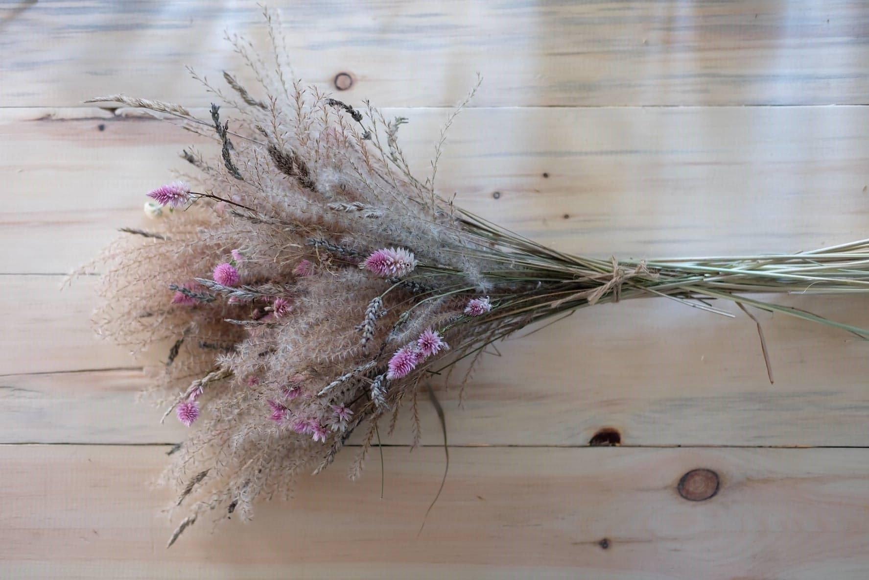 fleurs séchées quebec magog