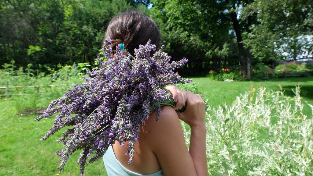 fermière fleuriste magog fleurs locales