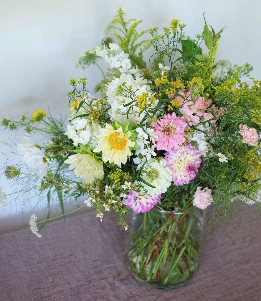 fleurs août Cantons de l'est