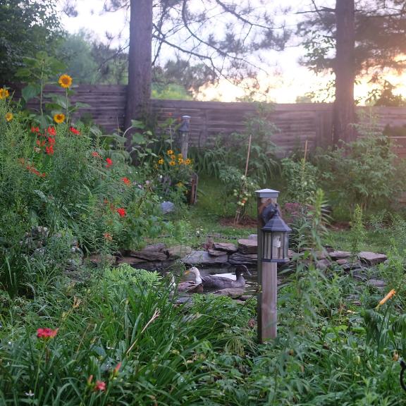 jardin alex à la campagne