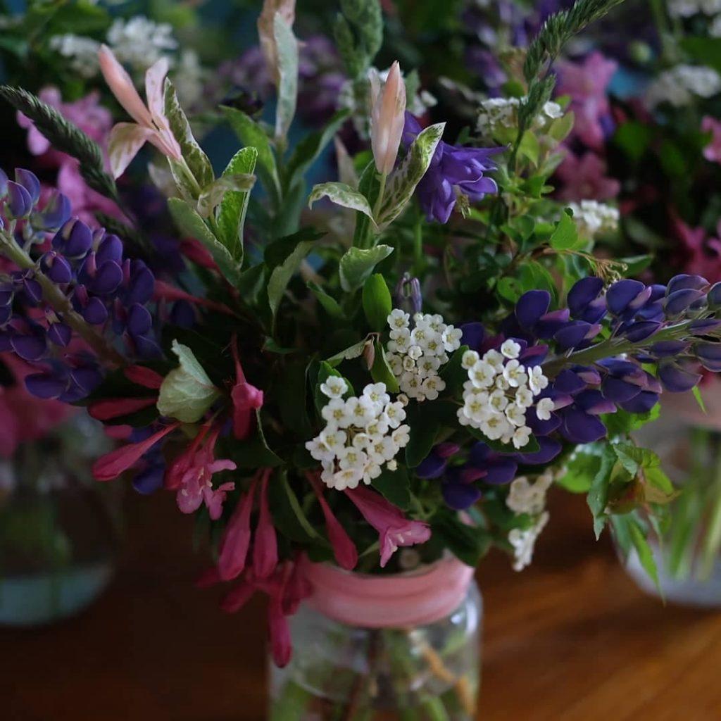 fleurs juin cantons-de-l'est