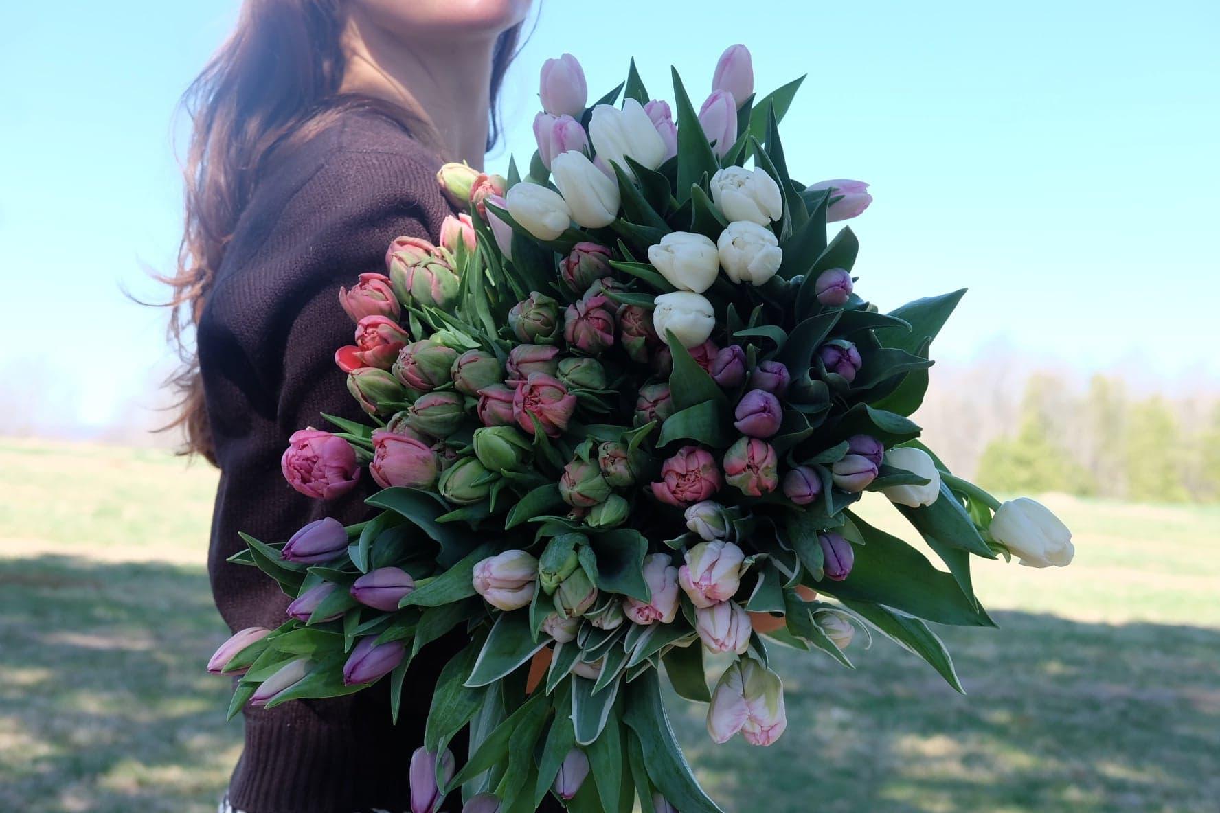 fete des mères magog tulipes