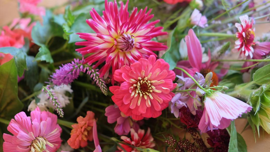 fleurs écoresponsables fleuriste magog