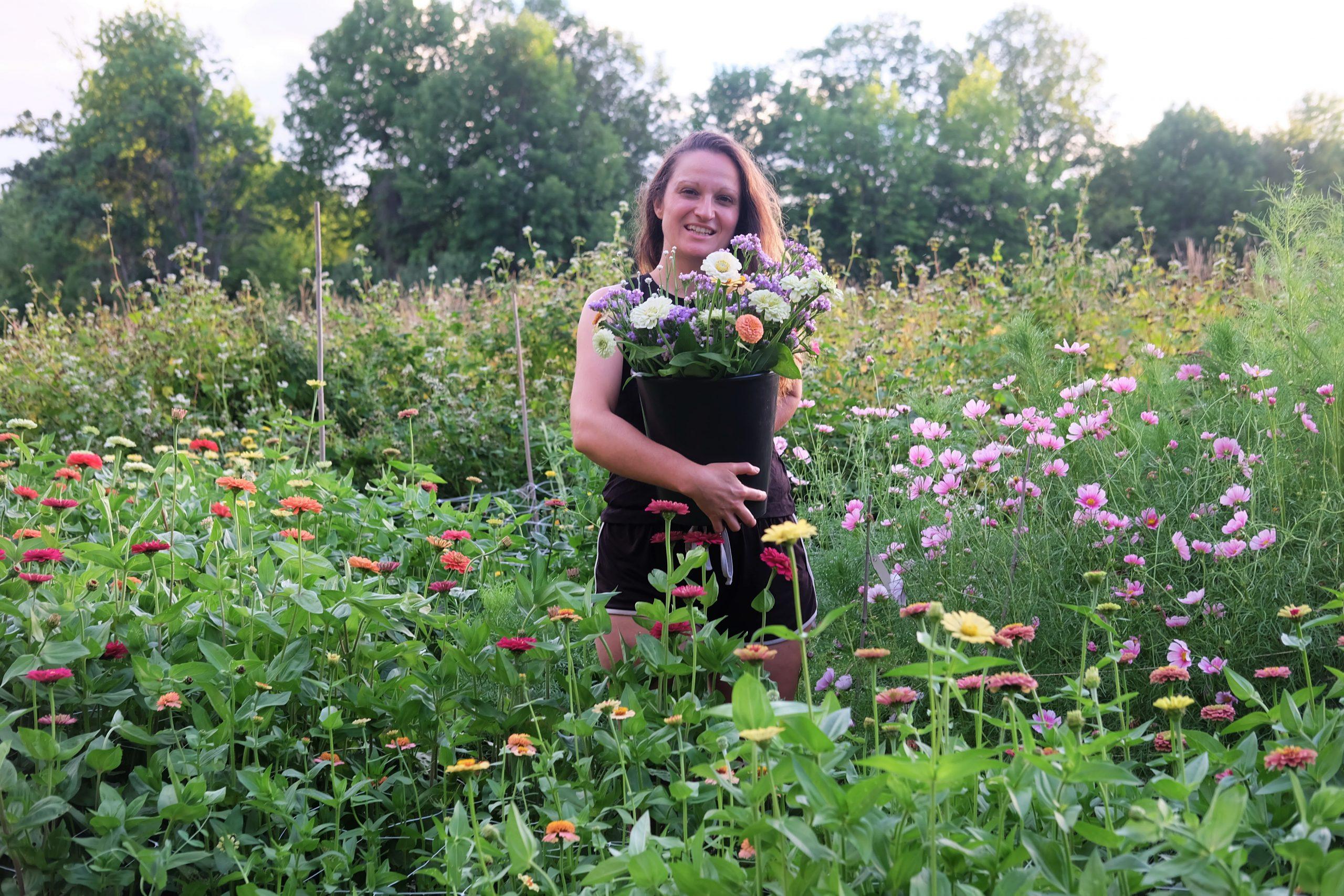 atelier culture de fleurs annuelles