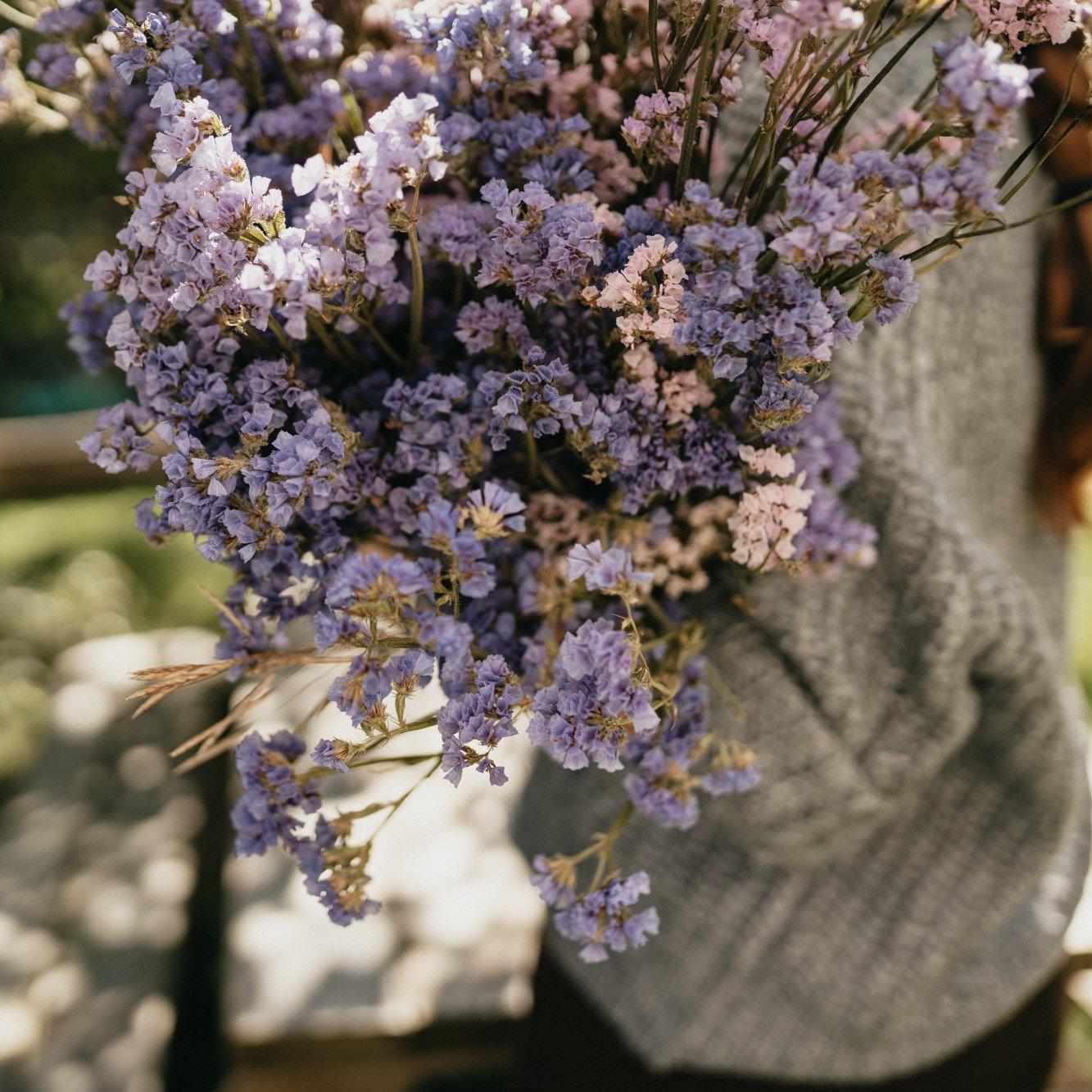 fleurs séchées bleu magog